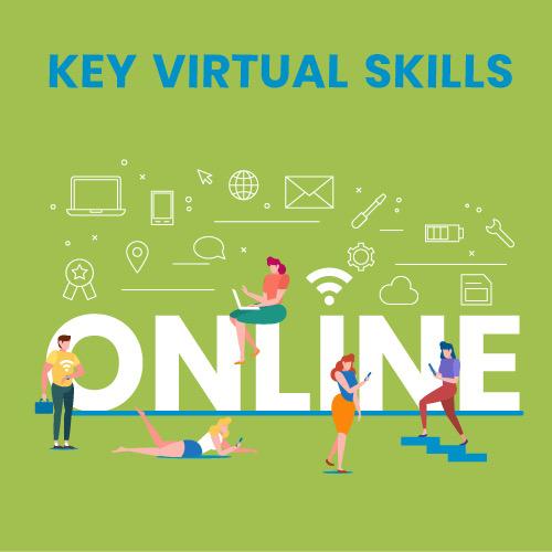 Online virtual skills